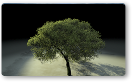 Leaf Grass Shader
